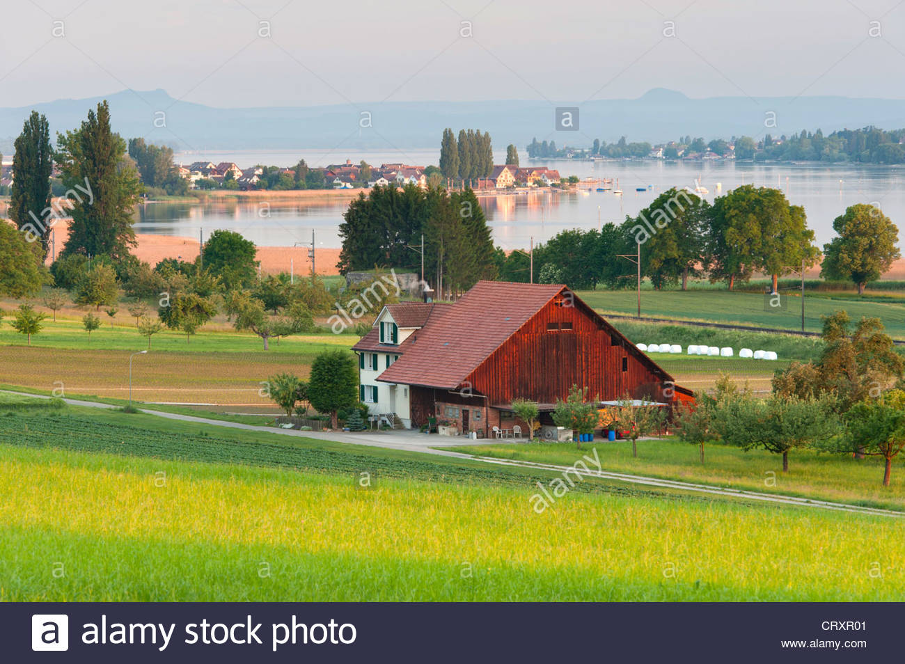 Switzerland, Triboltingen, View of farmstead and village in background - Stock Image