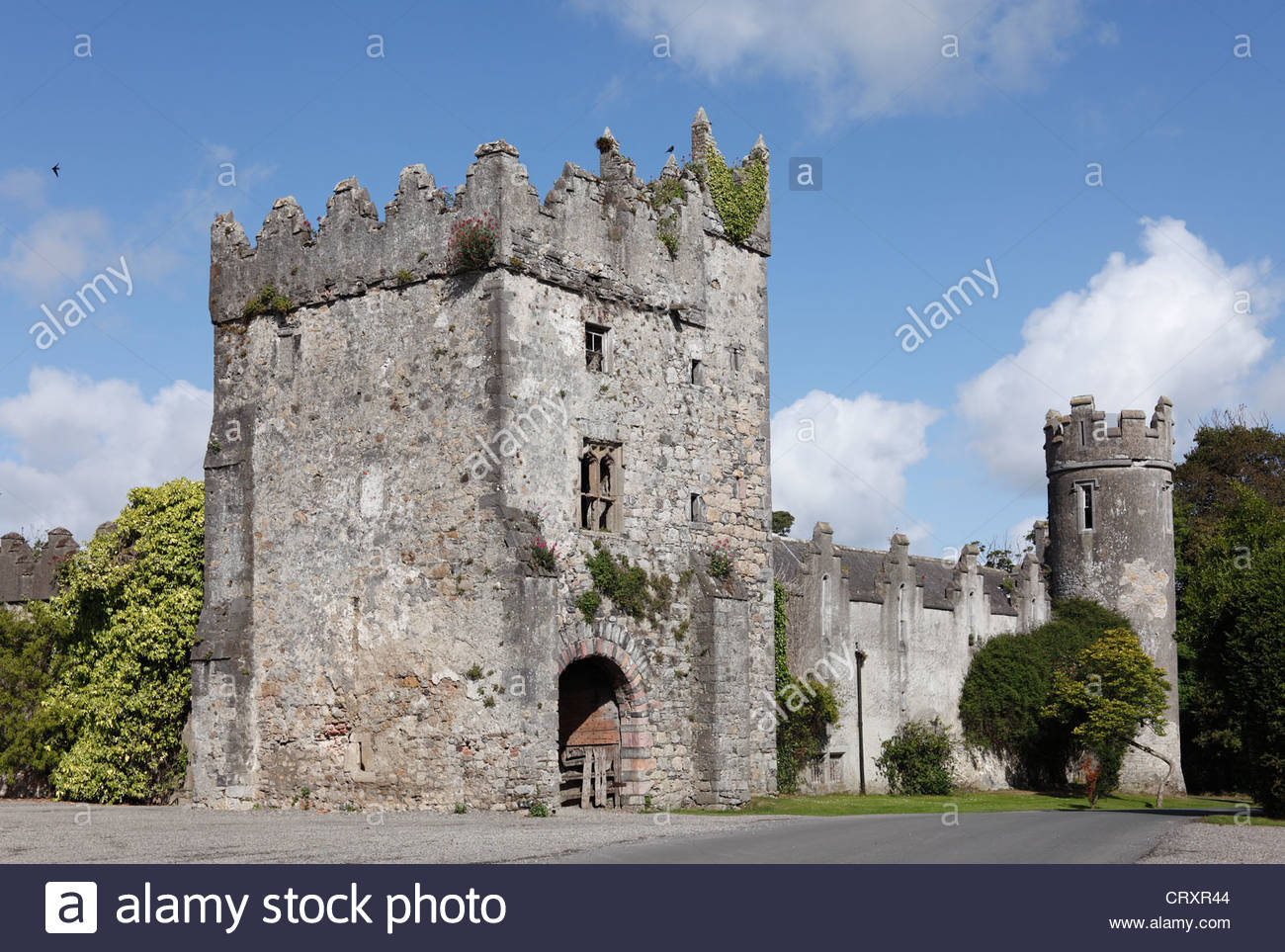 Ireland, Leinster, County Fingal, View of Corr castle - Stock Image