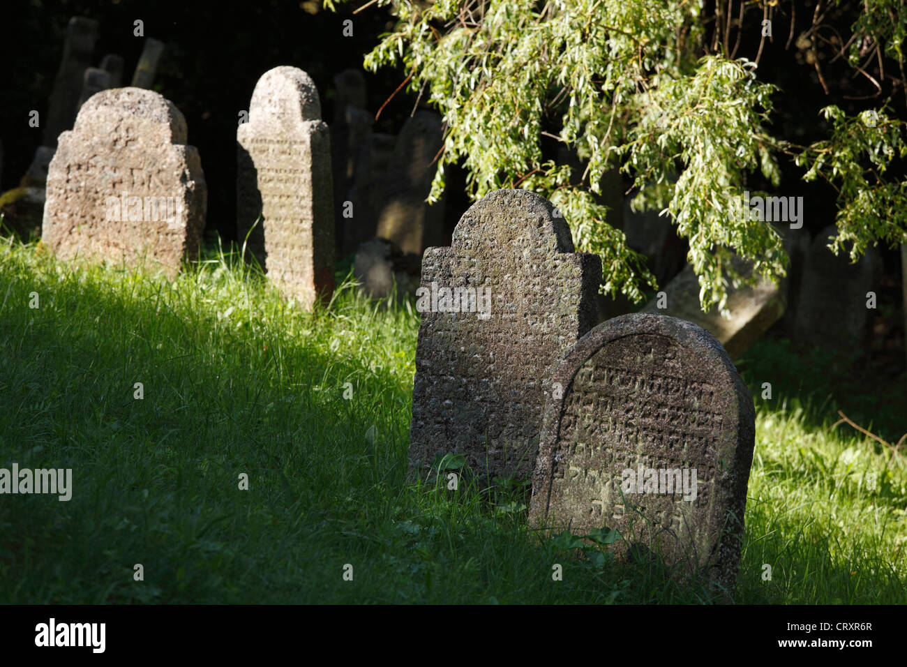 Germany, Bavaria, Flossenbuerg, View of jewish grave yard - Stock Image