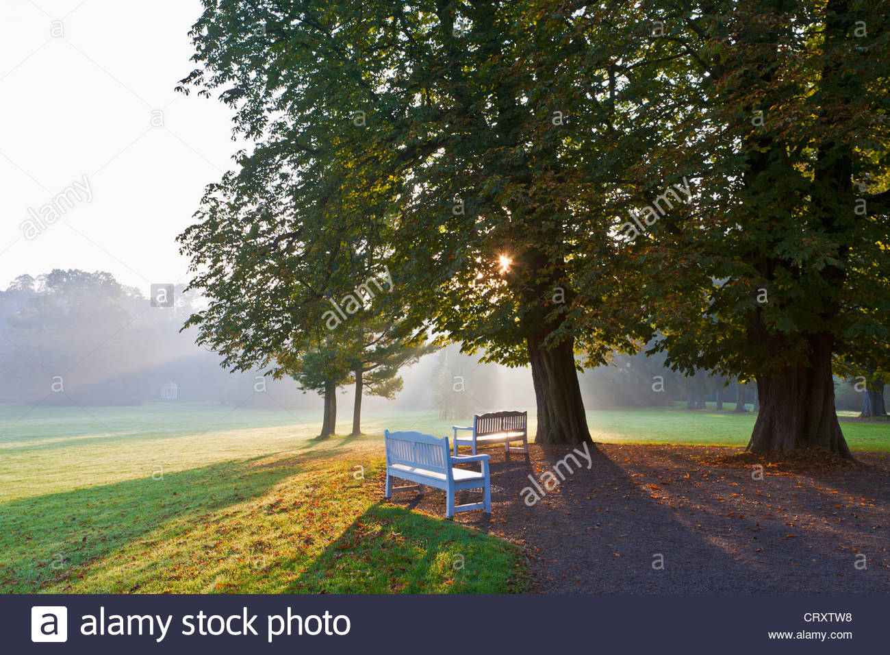 Germany, Thuringia, Weimar, View of palace garden - Stock Image