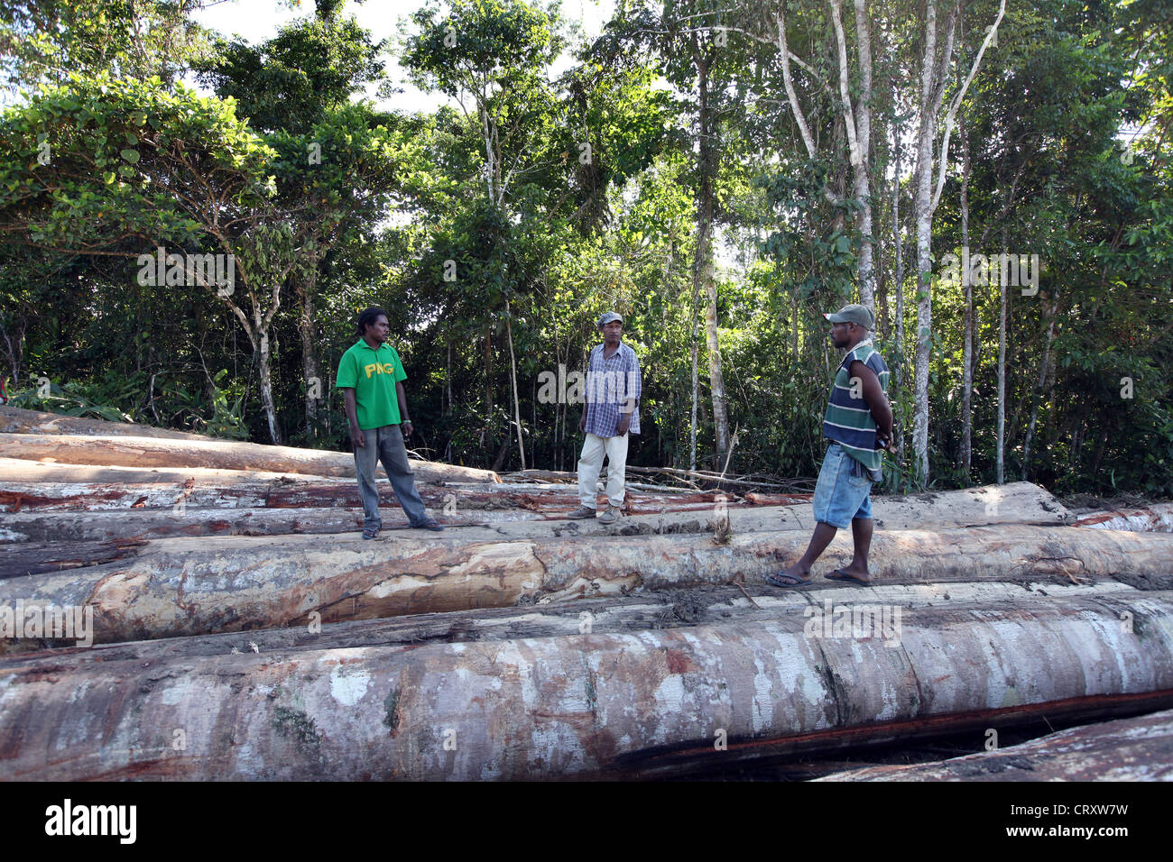 Lumberjacks in a clearing of a log area, province of Madang, Papua Neuguinea Stock Photo