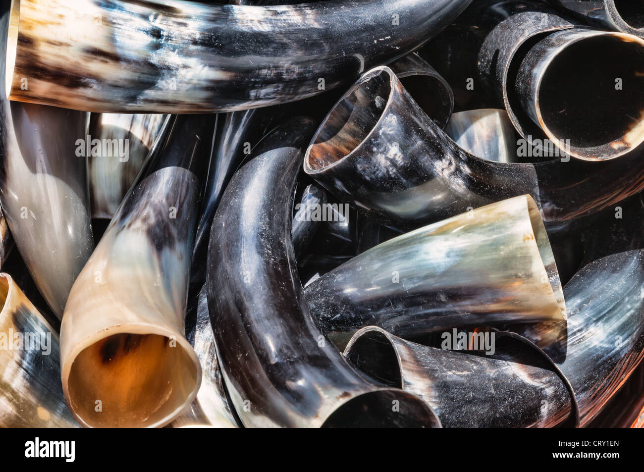 Beer horn made of cow horn - Stock Image