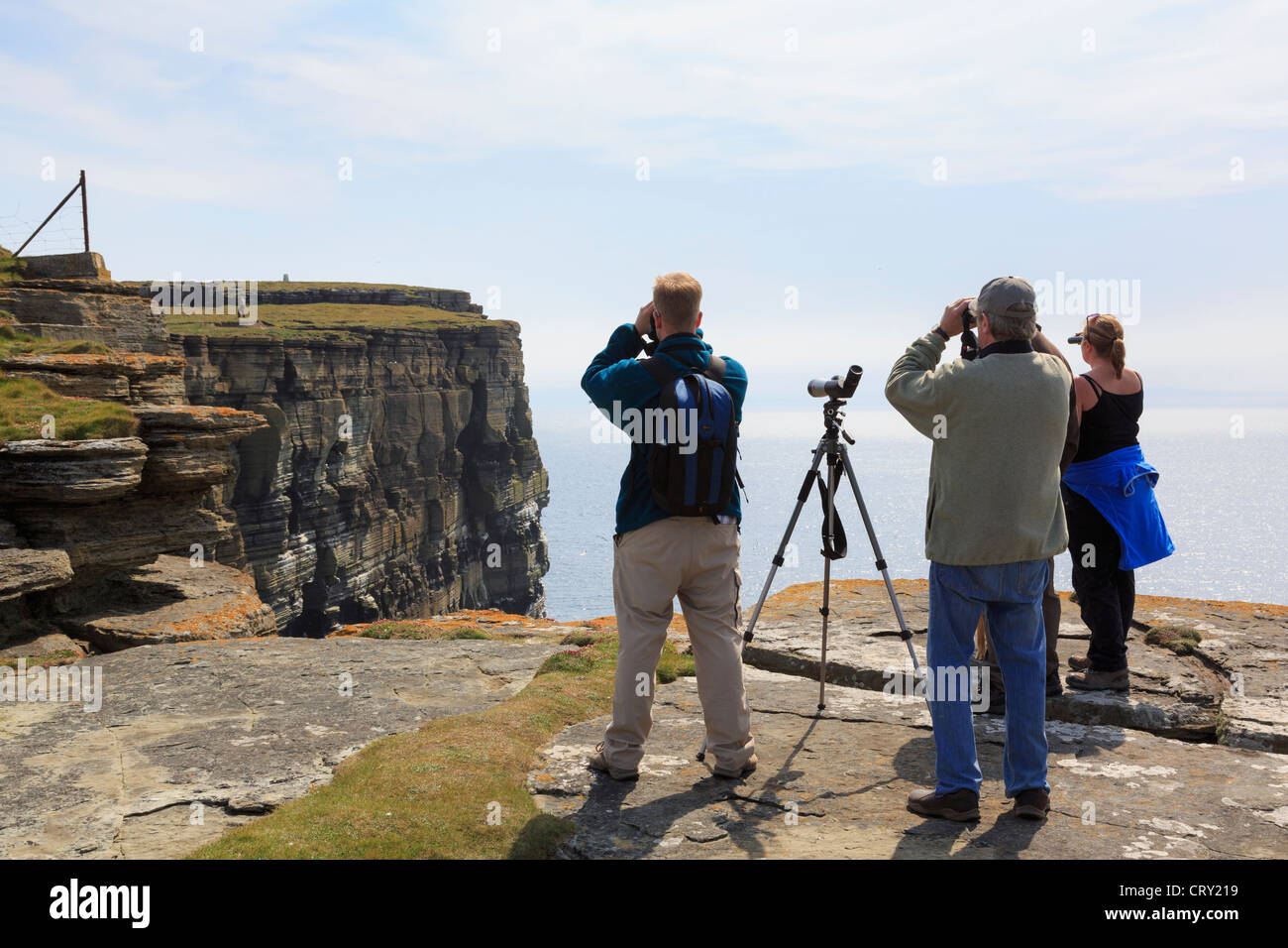 People Using Binoculars And A Telescope To Watch Puffins