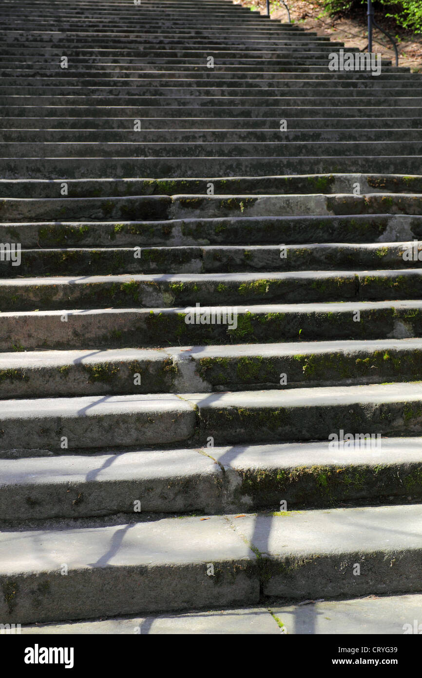 Vertical Old Stone Staircase   Stock Image
