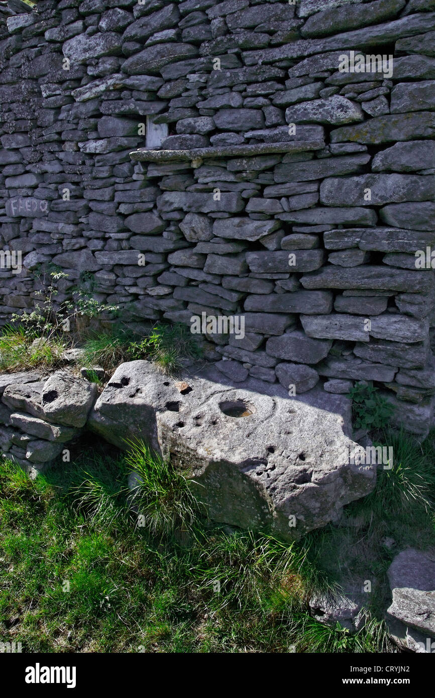 granite cup and ring marked petroglyph stone boulder - alp of faedo - canton of ticino - switzerland - Stock Image