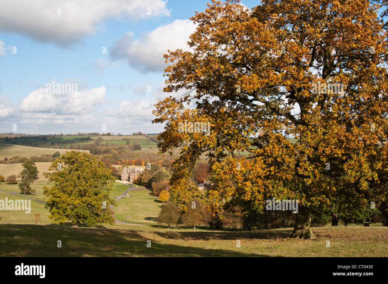 Launds Abbey viewed from amongst the mature parkland trees displaying their Autumn colours in Leicestershire, England - Stock Image