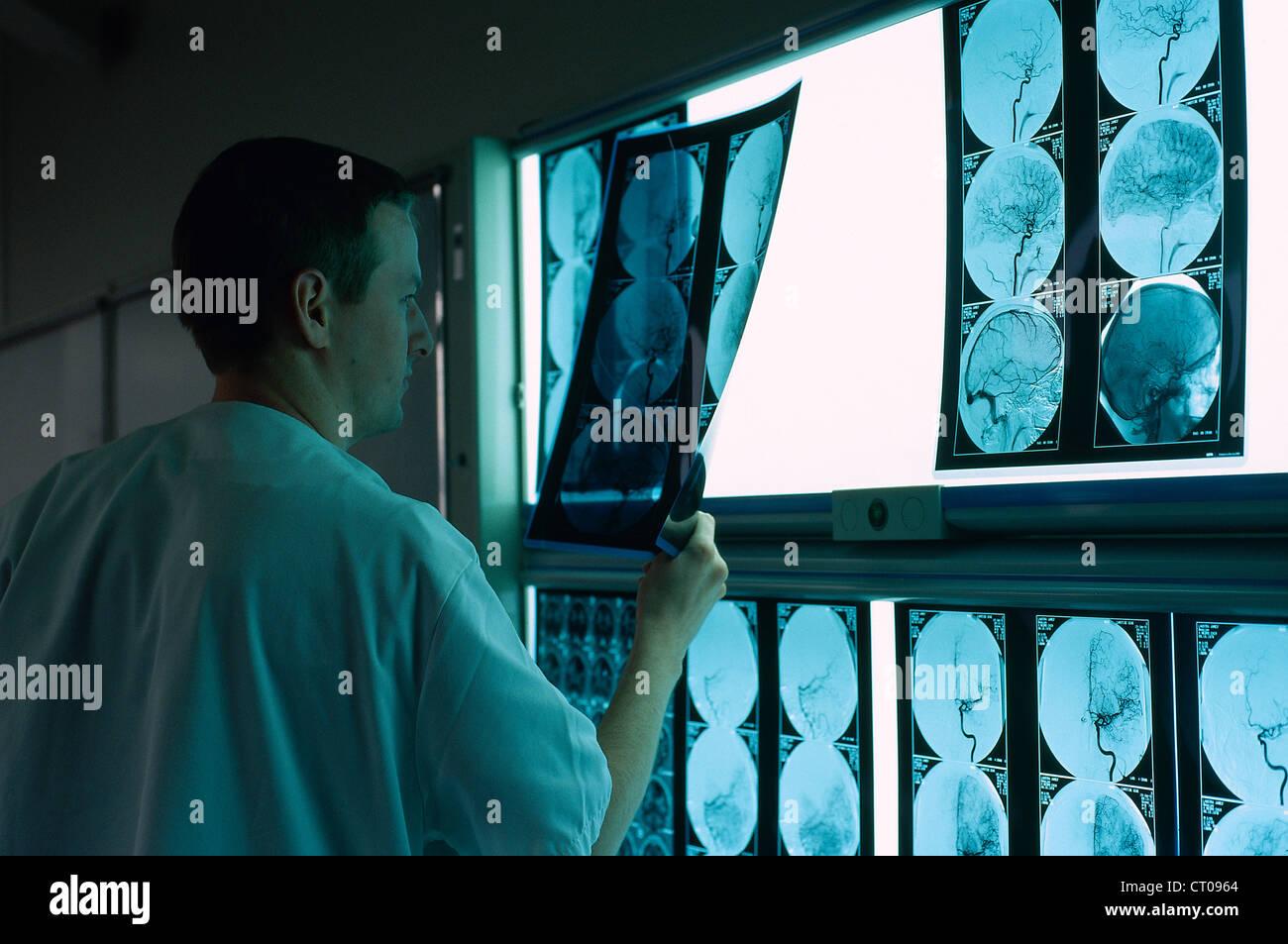 Radiologist Stock Photo 49179708 Alamy