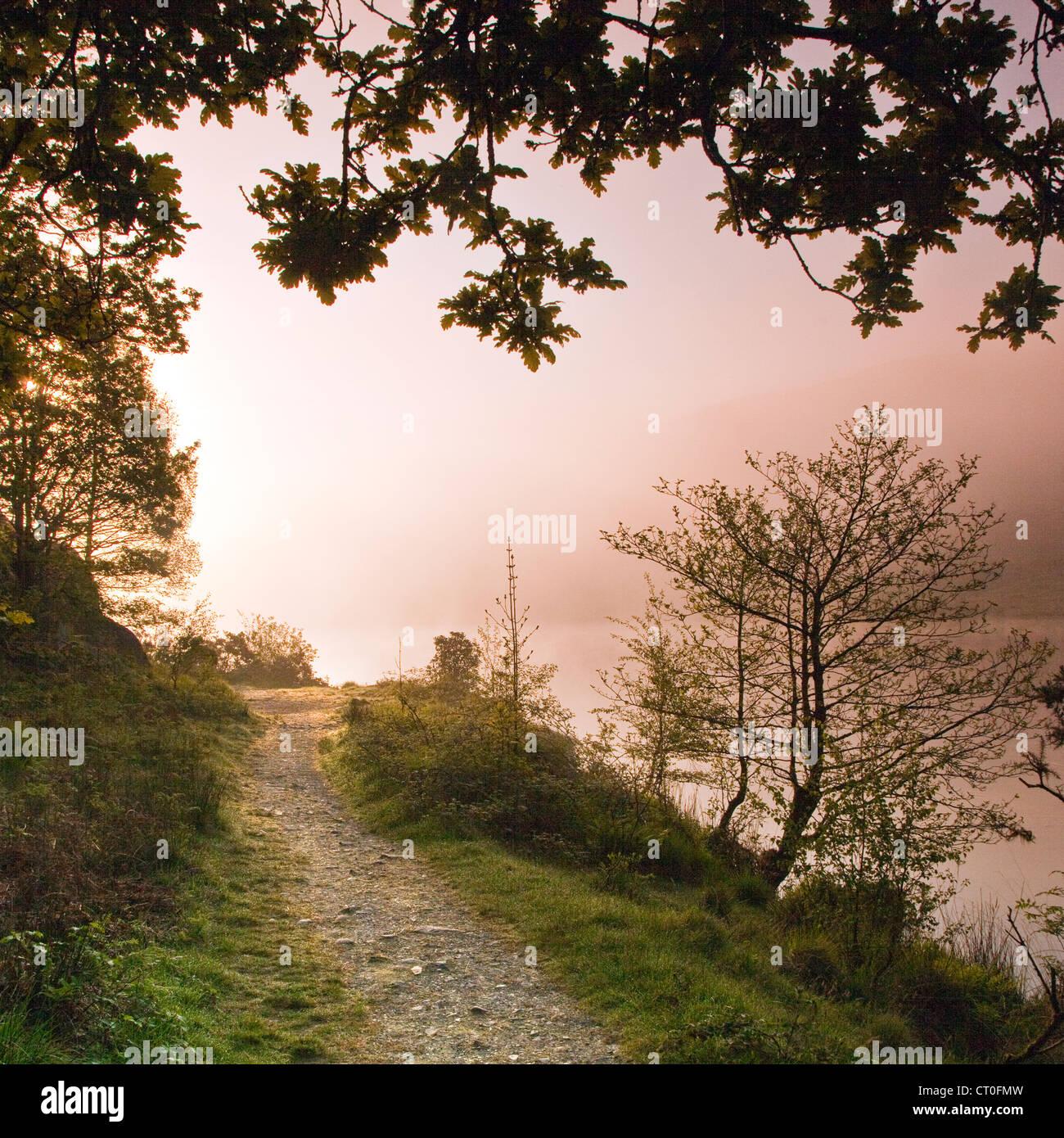Misty Dawn south east corner of Llyn Dinas Lake in the Nantgwynant Valley Snowdonia National Park Gwynedd North - Stock Image