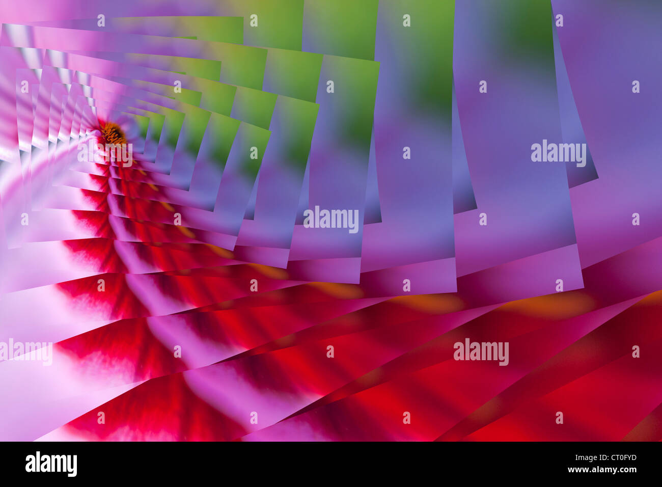 Dahlia Perspective (digital design) - Stock Image