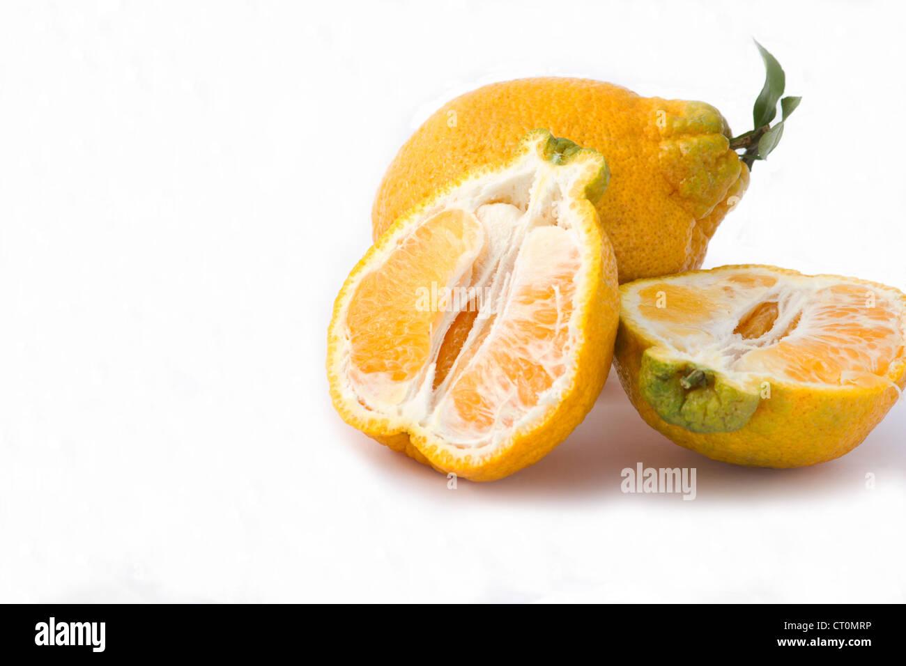 Fresh dekopom oranges on white background - Stock Image