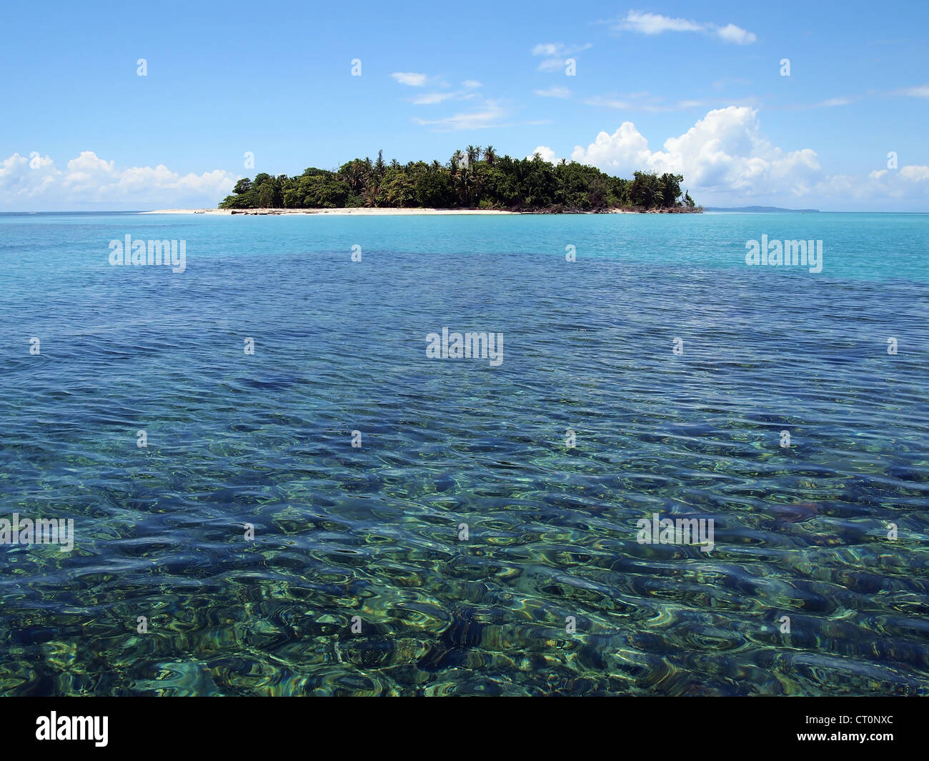Pristine island with white sandy beach in the Caribbean sea - Stock Image