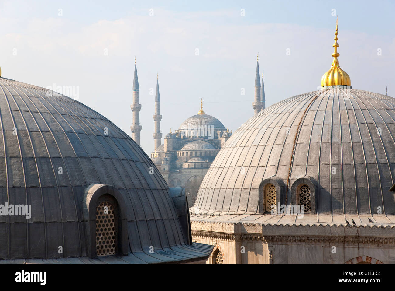 Ornate domes and windows - Stock Image