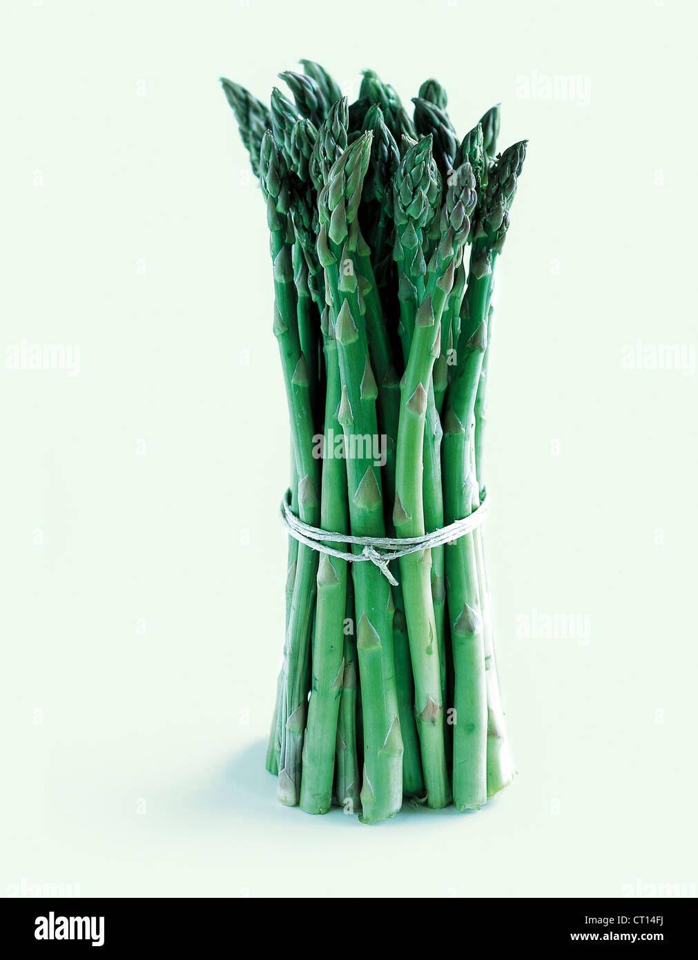 Close up of bunch of asparagus - Stock Image