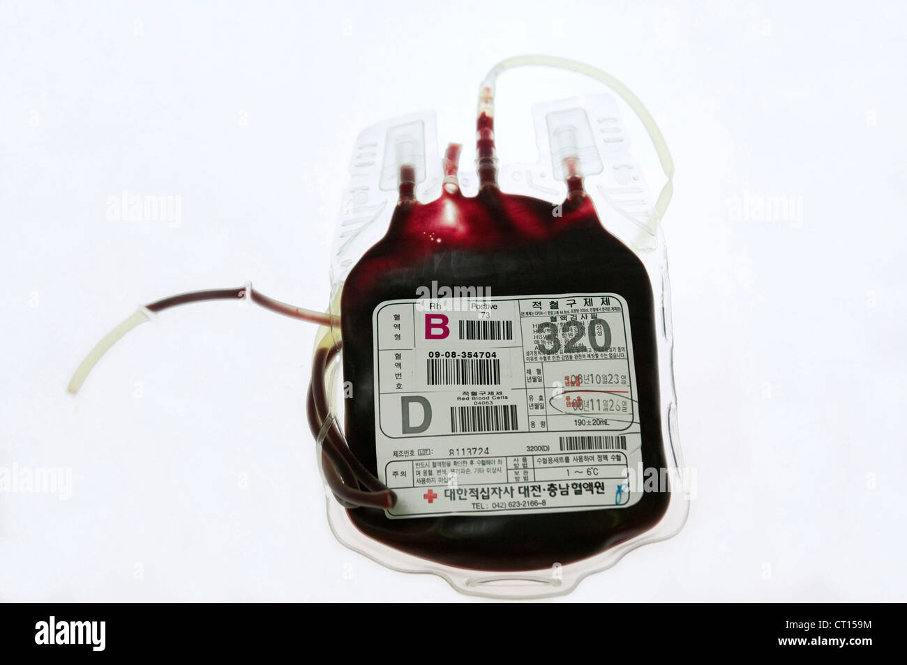 Still life of a blood bag. - Stock Image