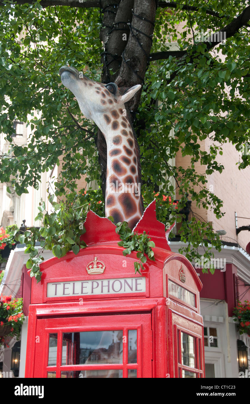Leicester Square. Sculpture of a giraffe in a phone box, called Long Distance ,created by Benjamin Shine - Stock Image