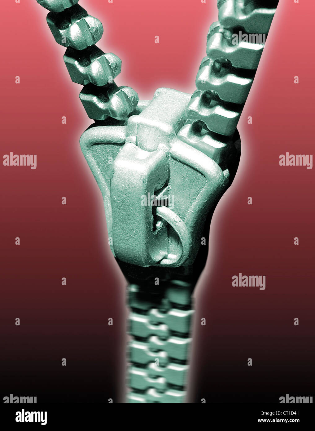 zipper half closed as a synonym for integration - Stock Image