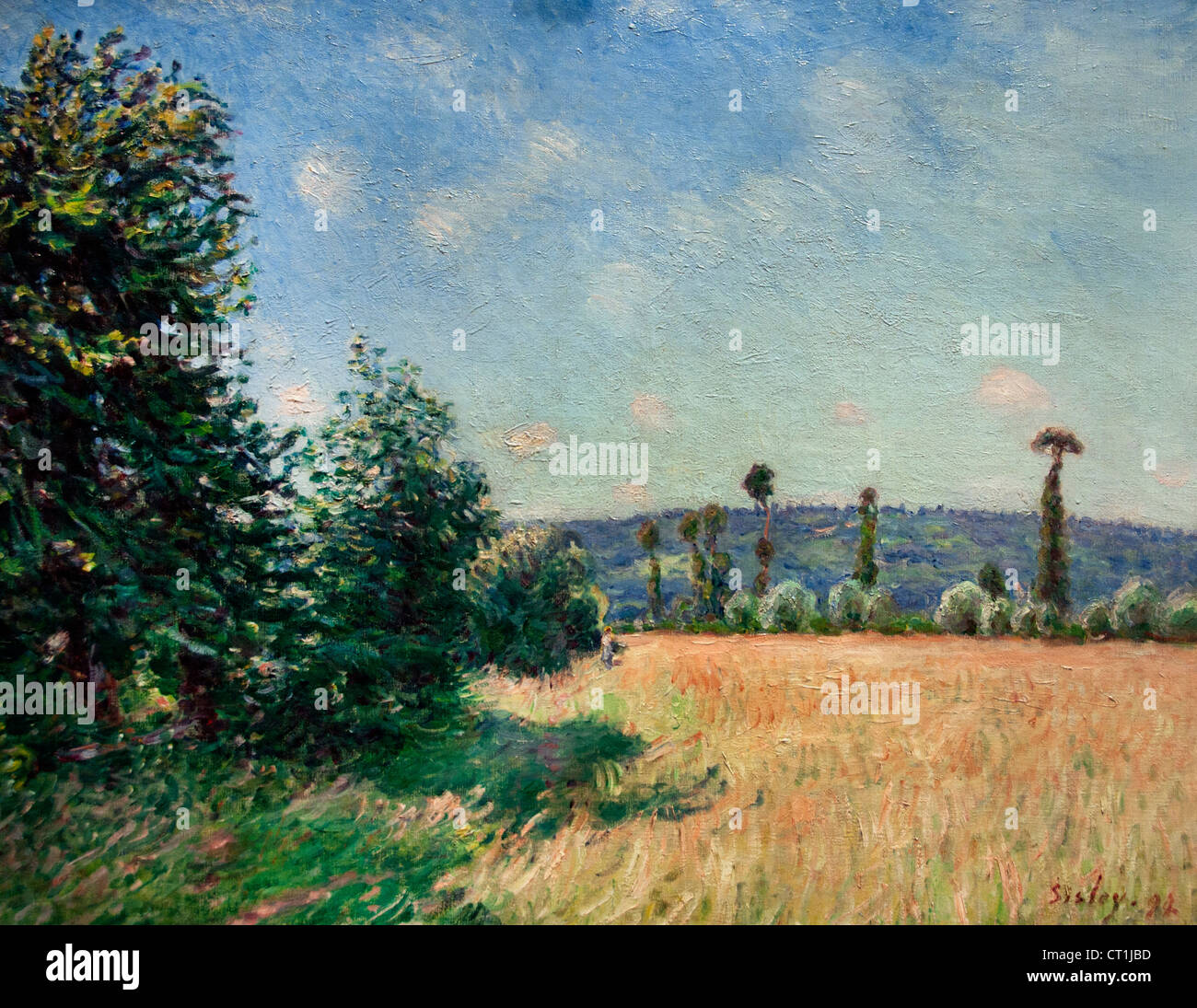 Sahurs Meadows in Morning Sun 1894  Alfred Sisley Alfred Sisley 1839 - 1899 British / French Impressionist - Stock Image