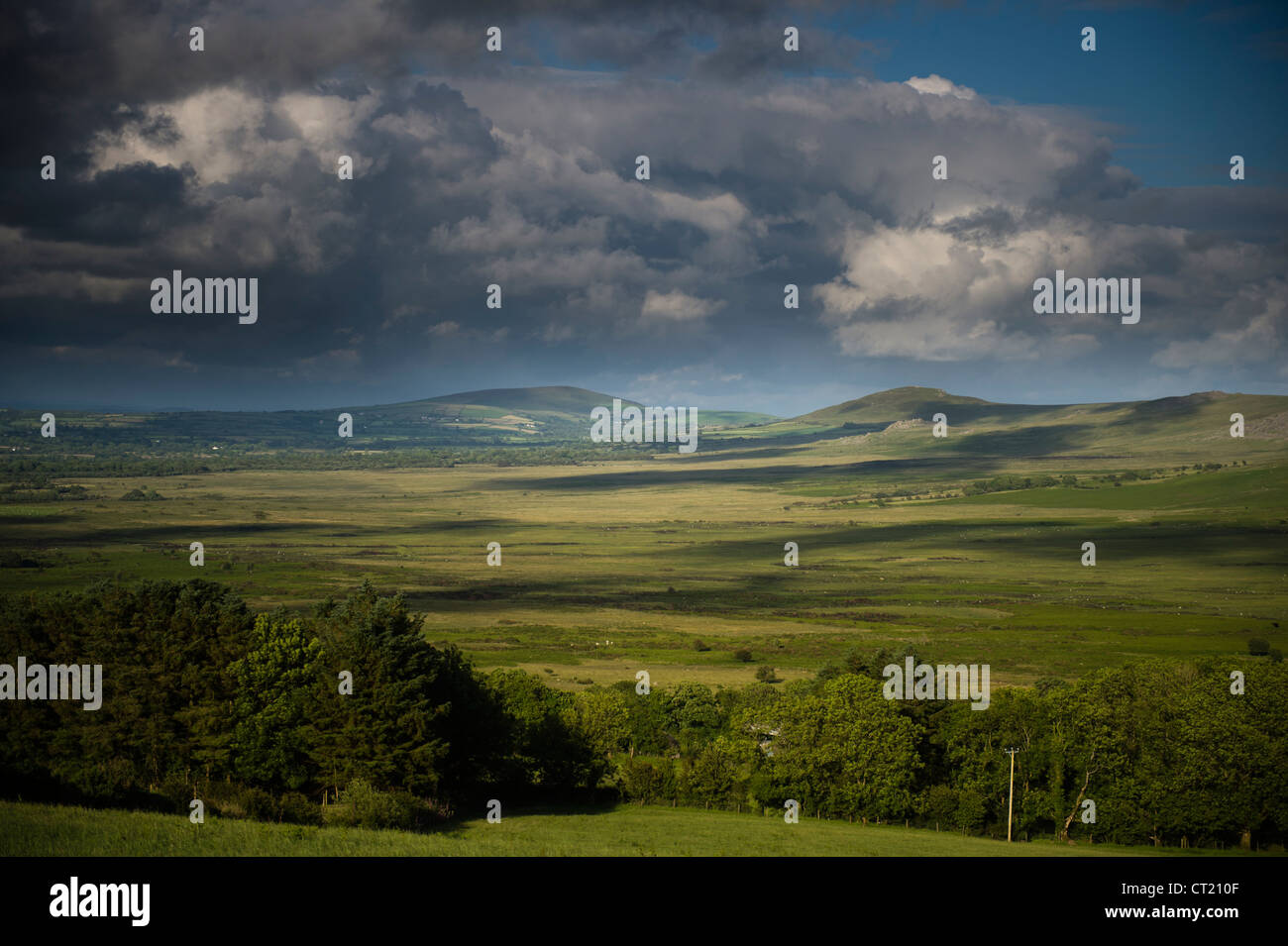 The Preseli hills, Pembrokeshire Wales UK - Stock Image