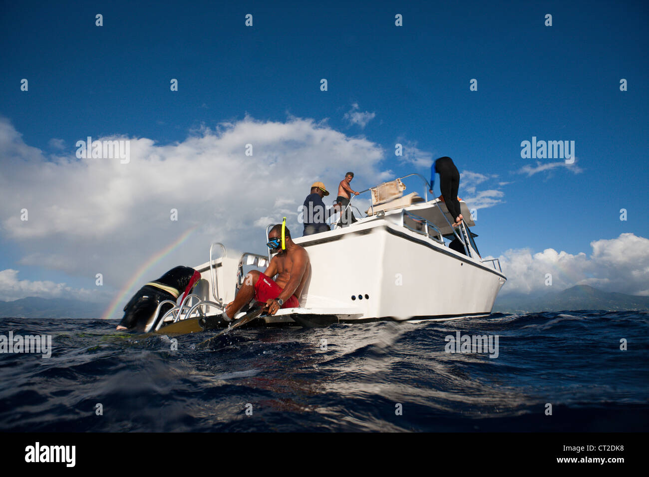 Whale watching Trip, Caribbean Sea, Dominica - Stock Image