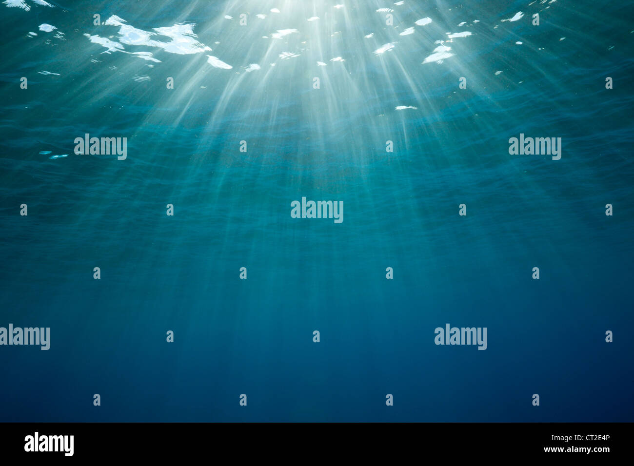 Sunbeams filtering through Water Surface, Caribbean Sea, Dominica - Stock Image