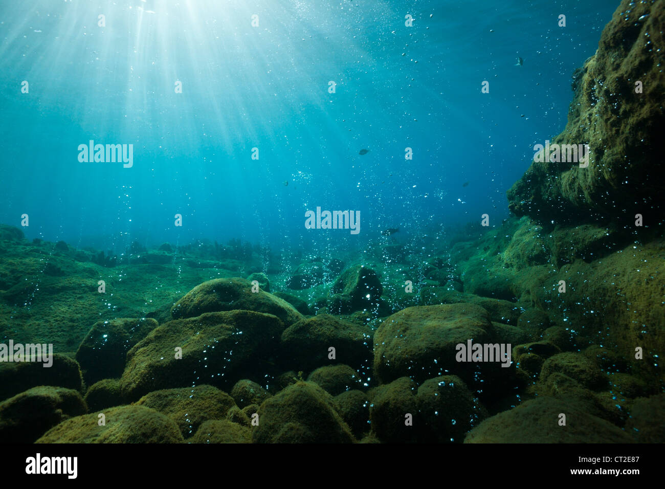 Volcanic Air Bubbles at Champagne Beach, Caribbean Sea, Dominica - Stock Image