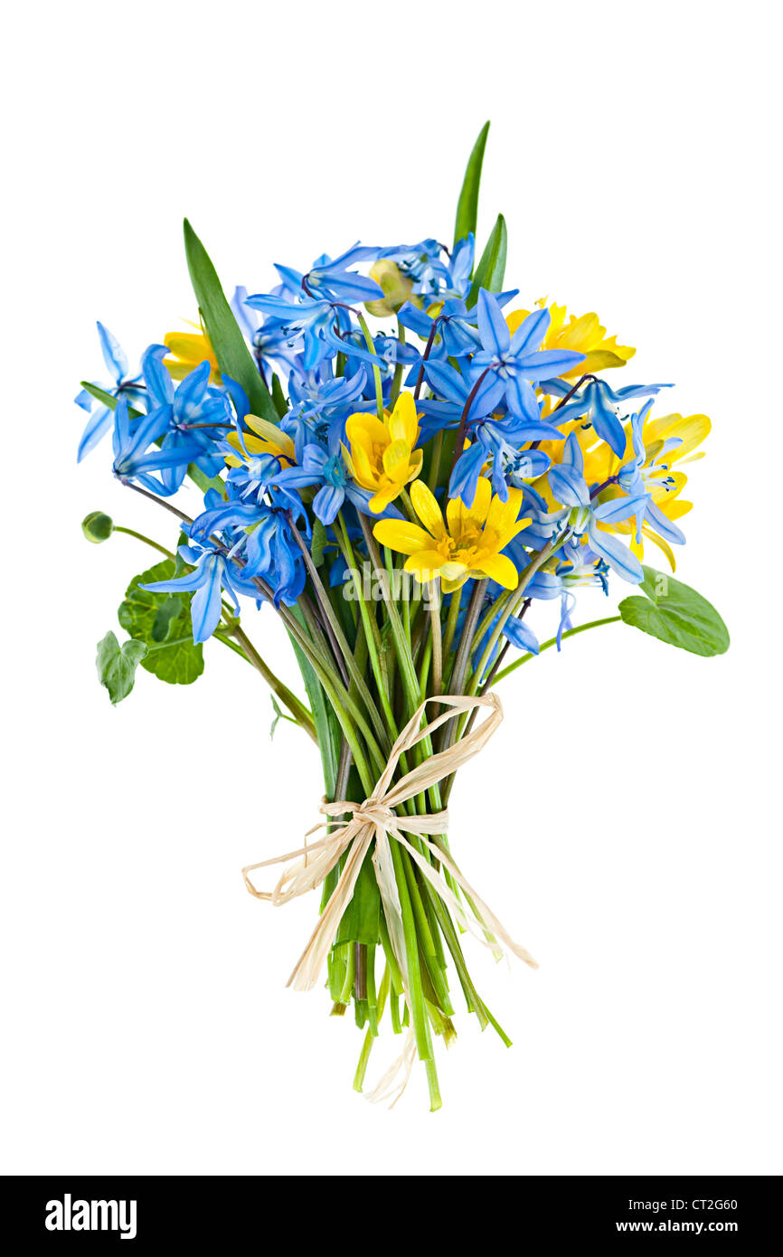 Tied bouquet of spring flowers isolated on white background - Stock Image