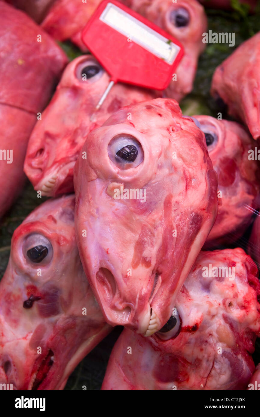 heads of dead sheep skinned for sale - Stock Image