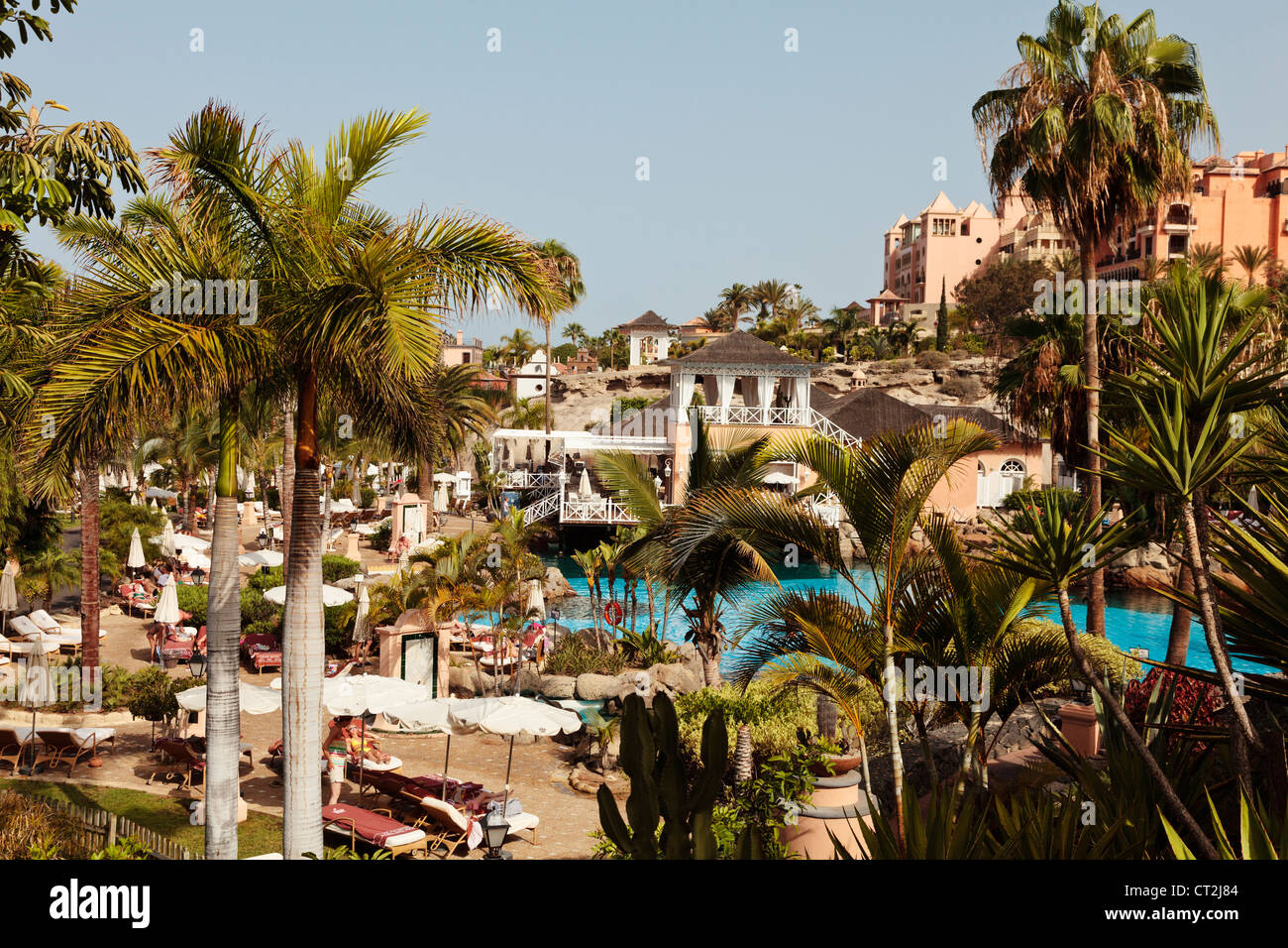 Pool and garden area at the five star Bahia del Duque resort in ...