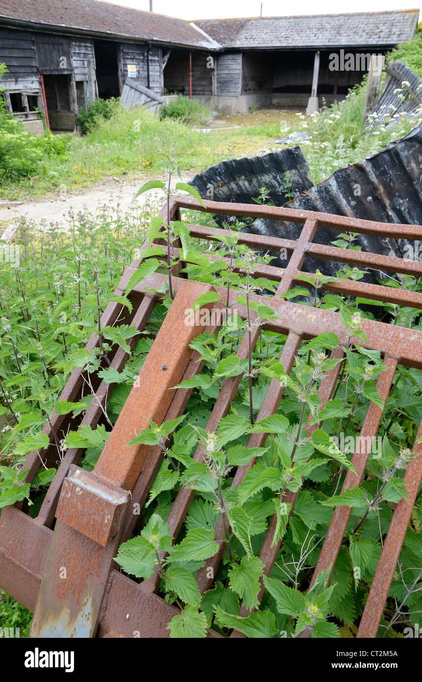 Derelict farmyard, falling into disrepair, Norfolk, UK, May - Stock Image