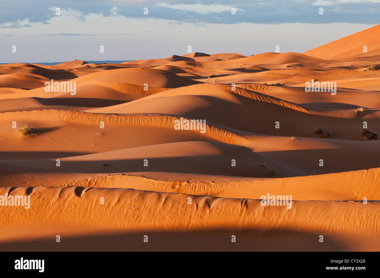 beautiful sand dunes at sunrise in the Sahara near Merzouga, Erg Chebbi, Morocco - Stock Image