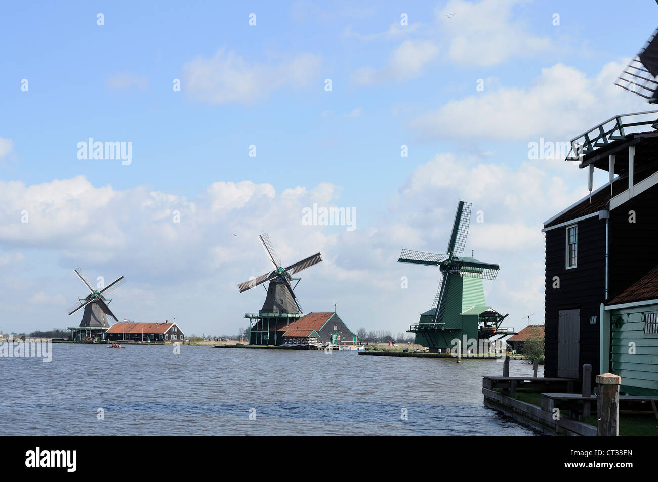 windmills, Zaanse Schans view of traditional windmills at touristic location, shot in bright spring light - Stock Image