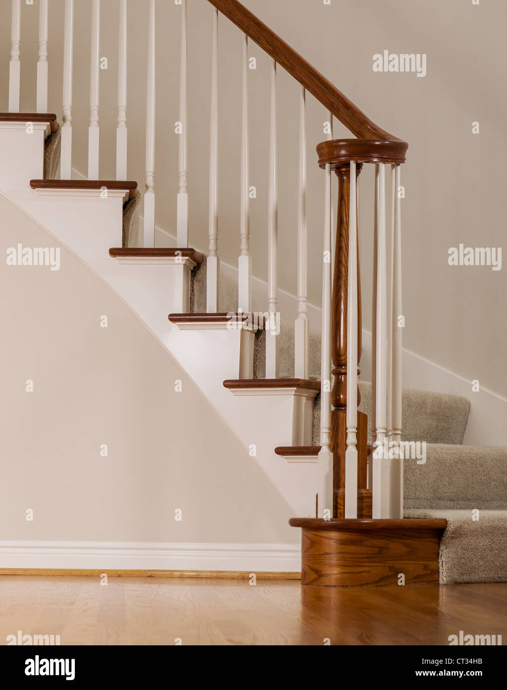 Wooden Oak Staircase With Carpet Steps And White Molding
