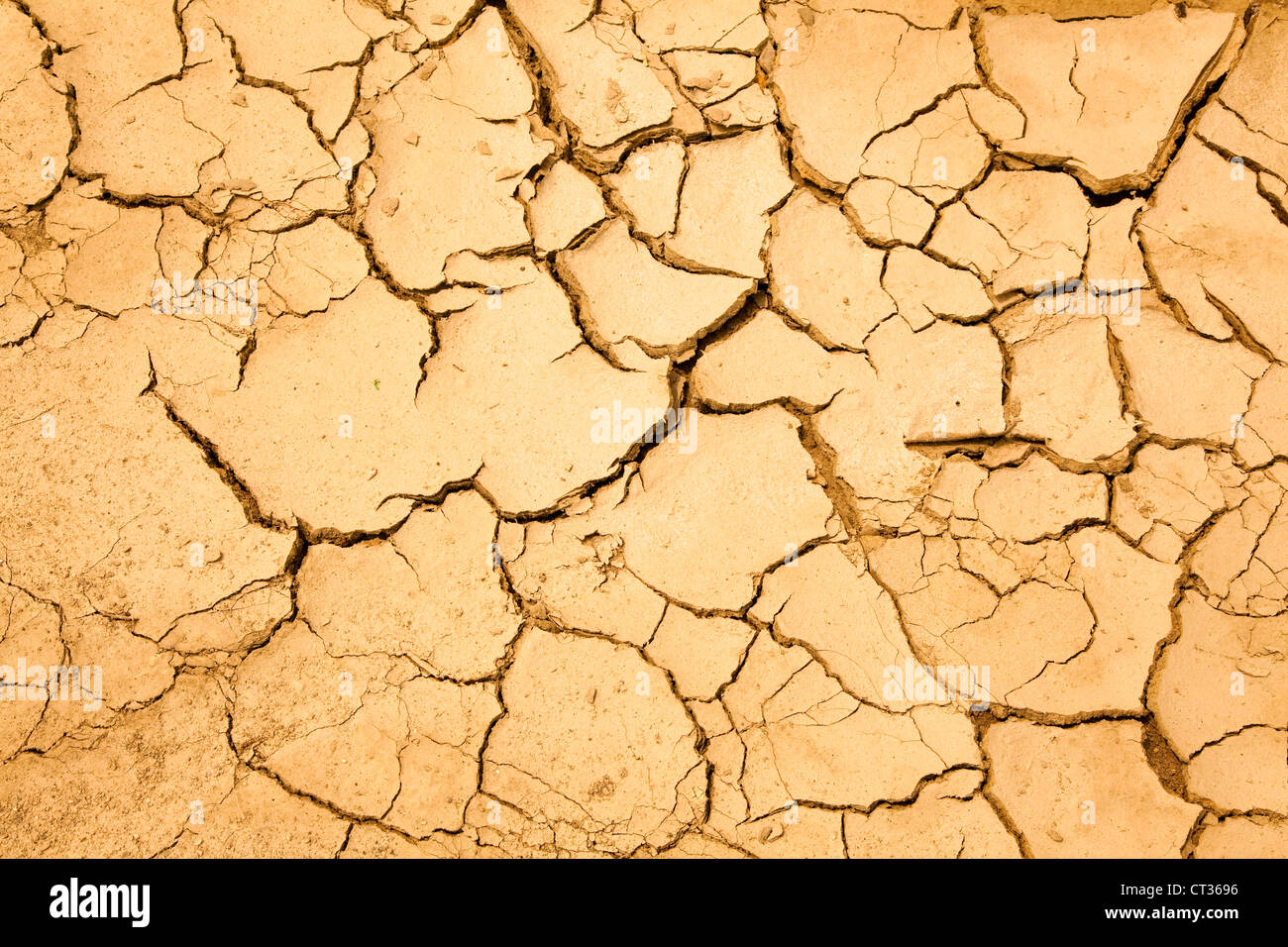 dry season with cracked ground - Stock Image