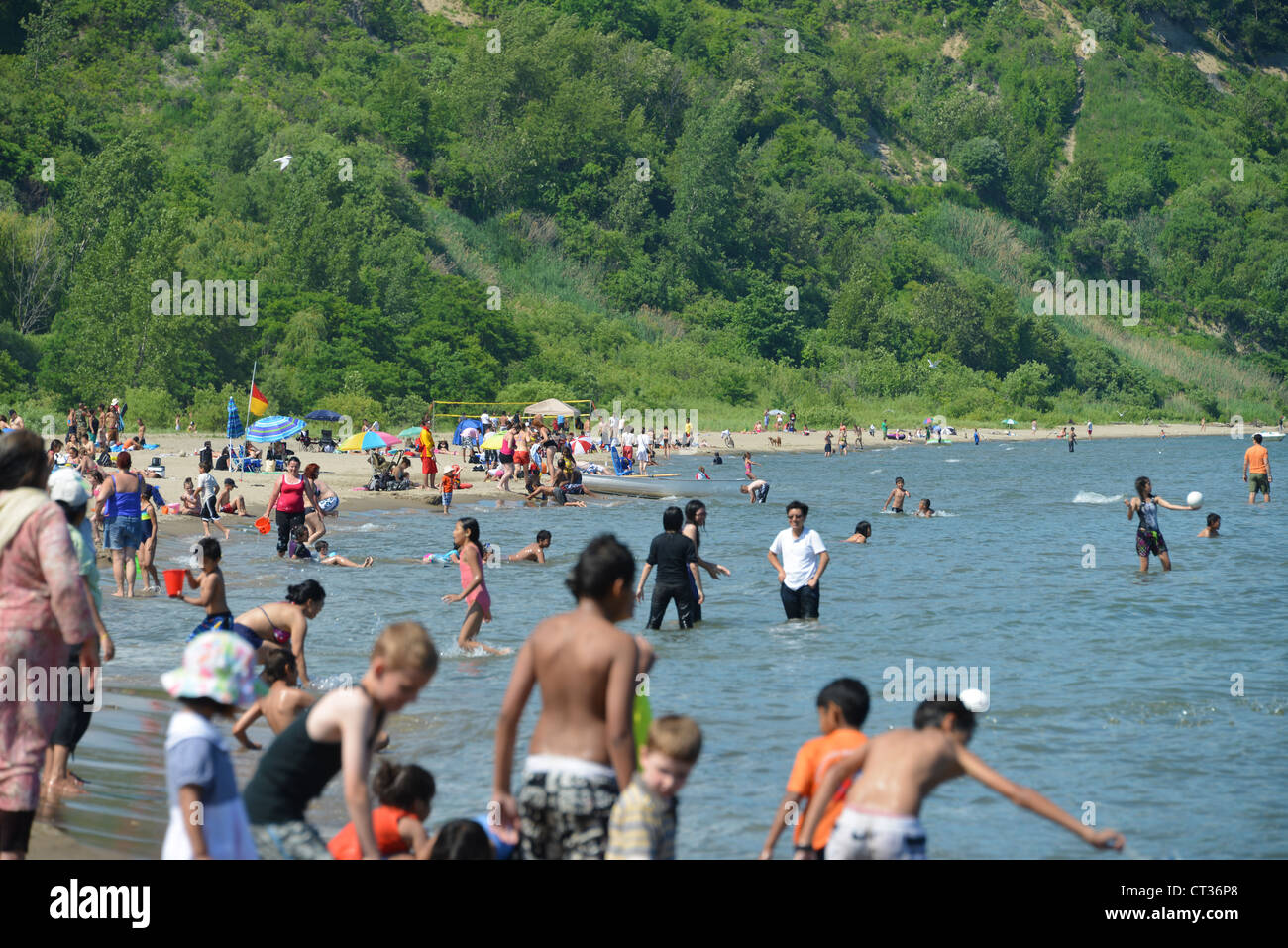View of the beach at Scarborogh Bluffs - Stock Image