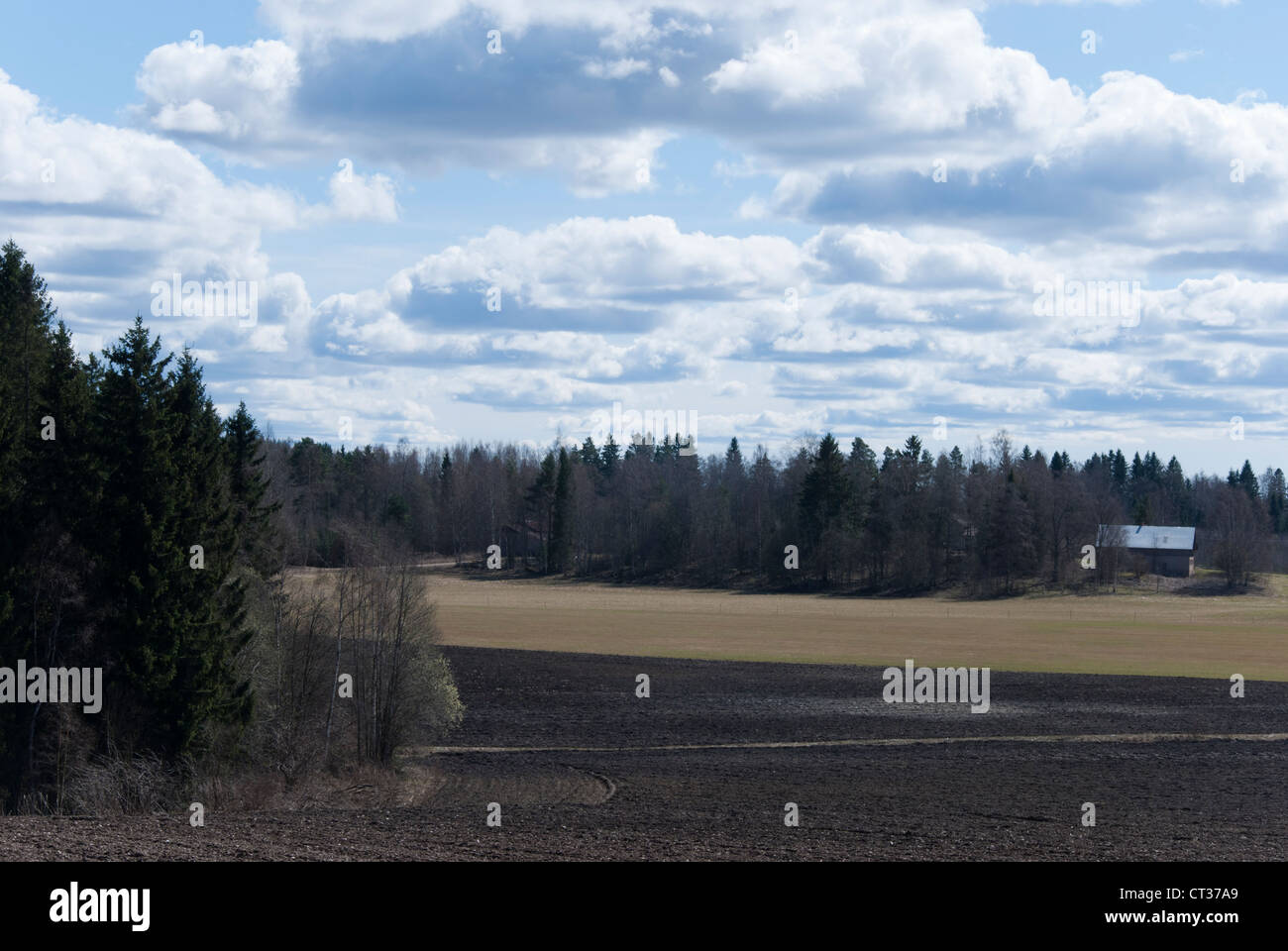 Finnish landscape - Stock Image