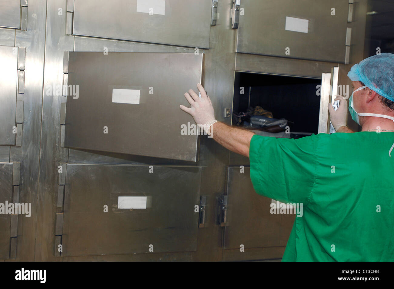 A mortuary technician removes a human body from a cold storage facility. - Stock Image