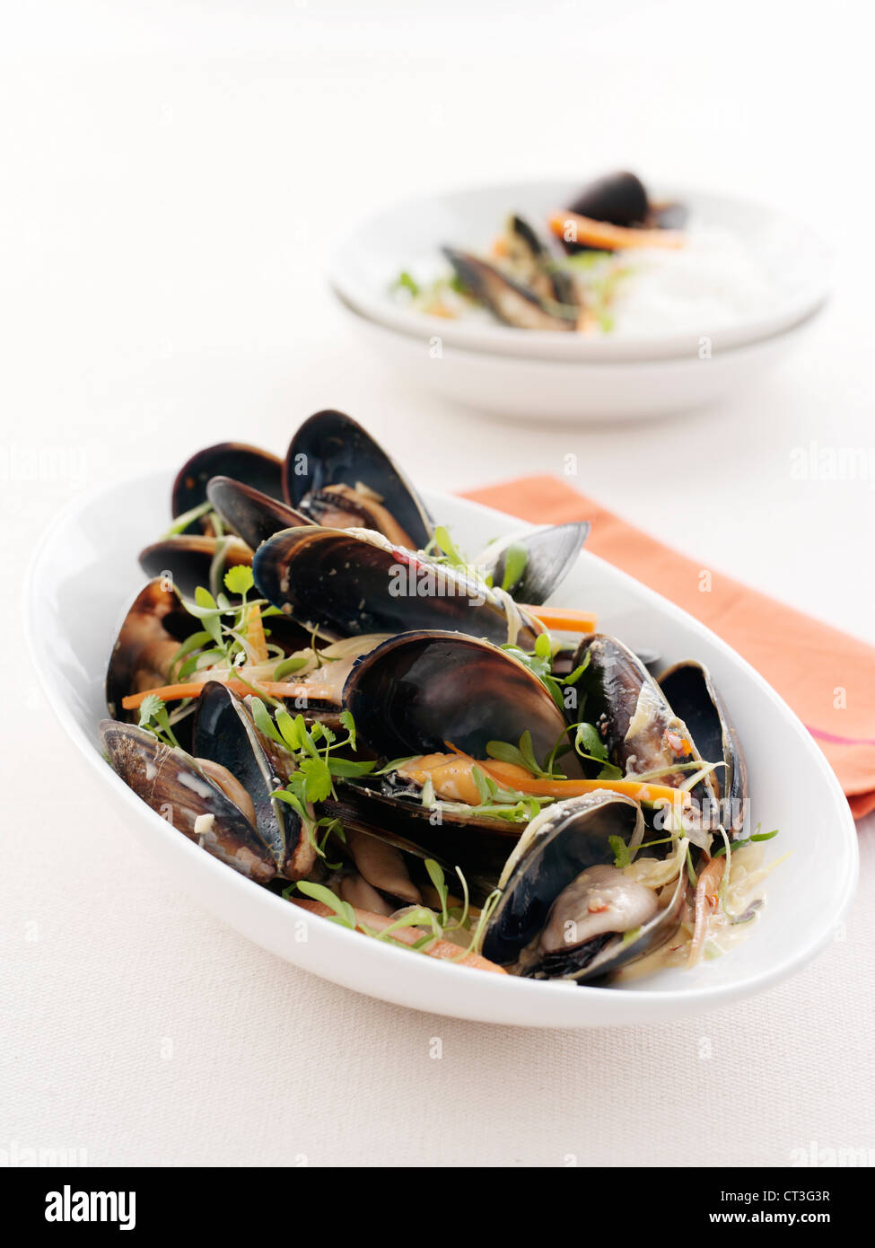 Plate of clams and pasta - Stock Image