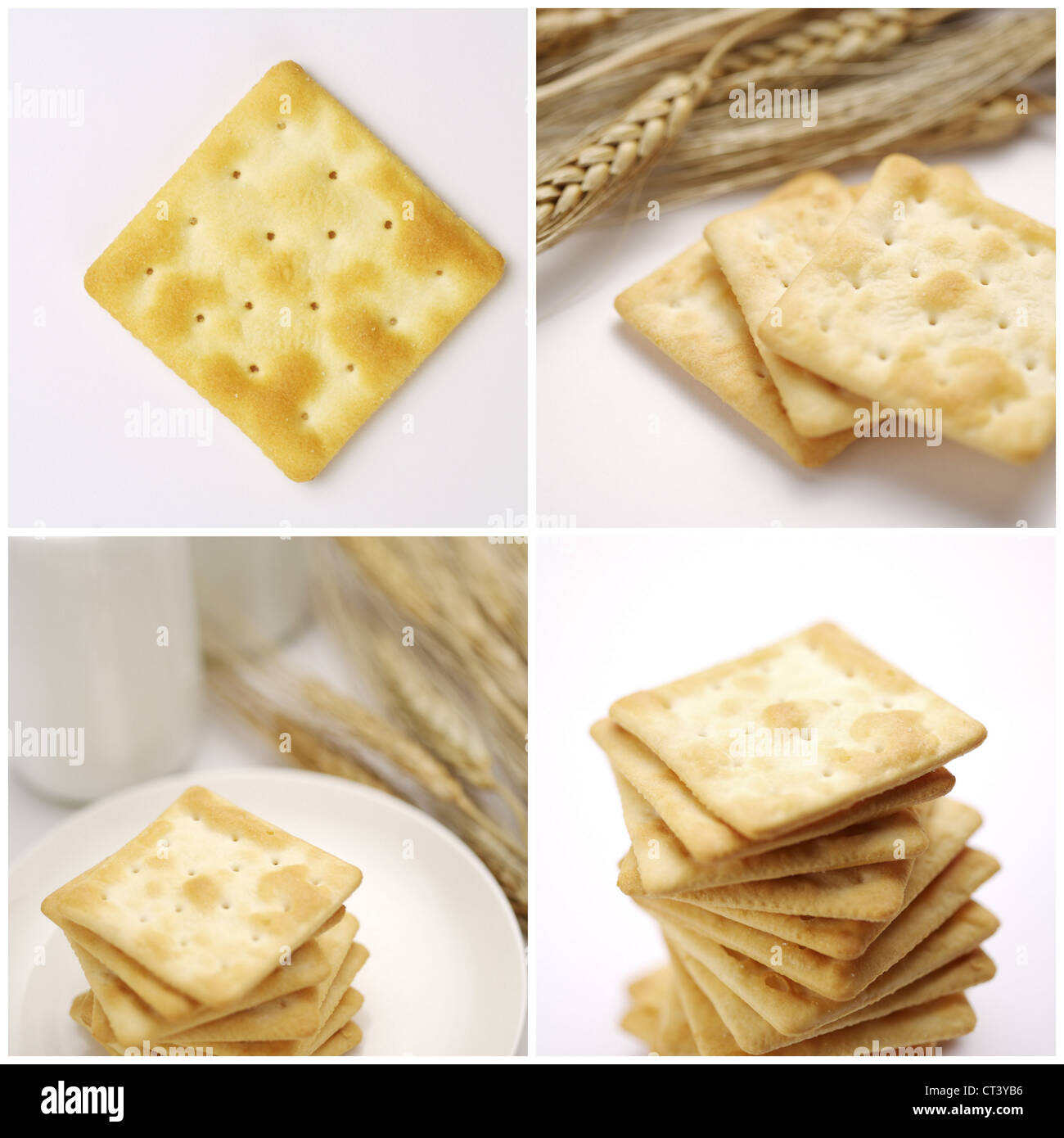 Cracker Biscuits Cookie collage - Stock Image