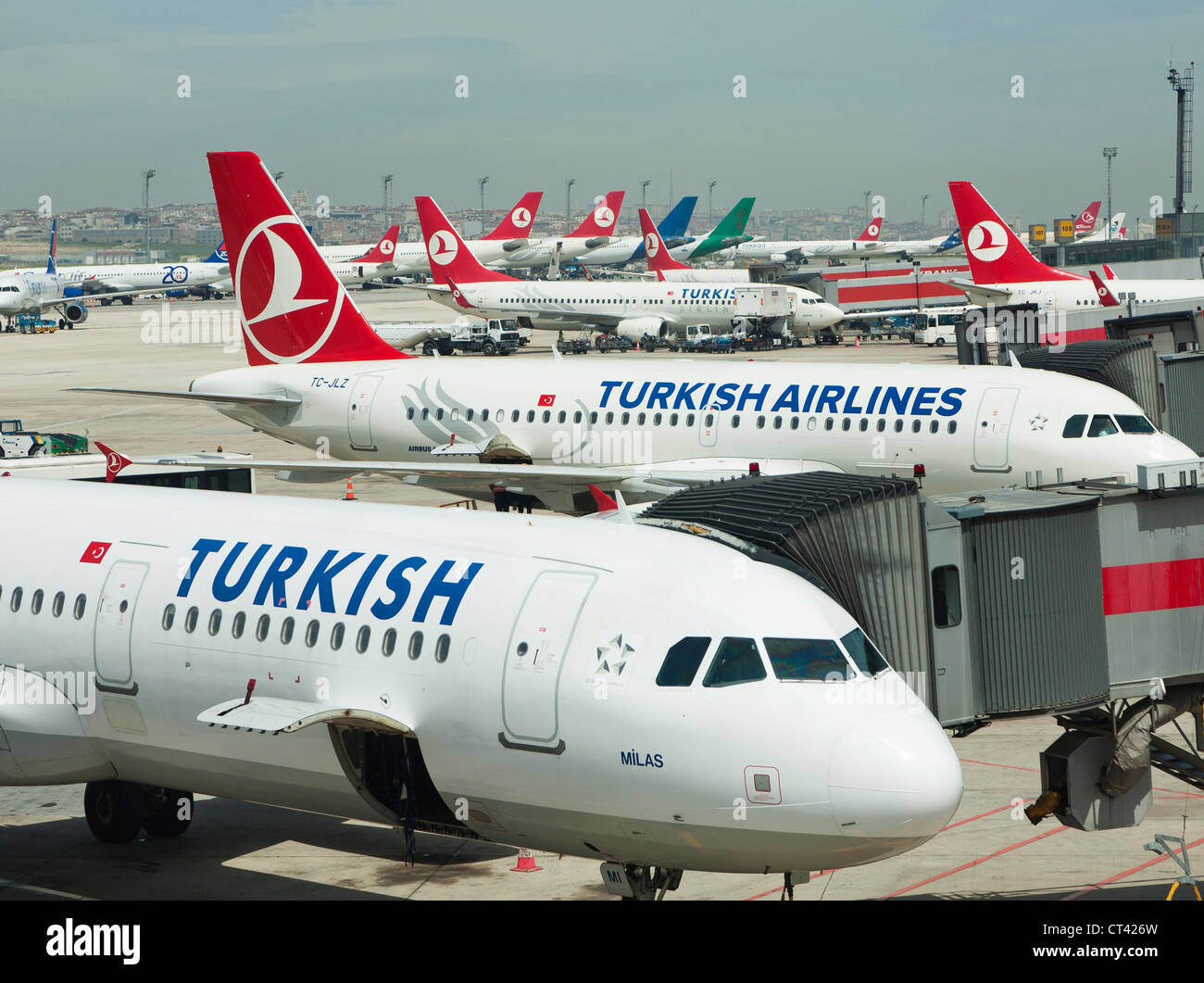 Turkish Airlines planes at Ataturk international airport in Istanbul Turkey - Stock Image