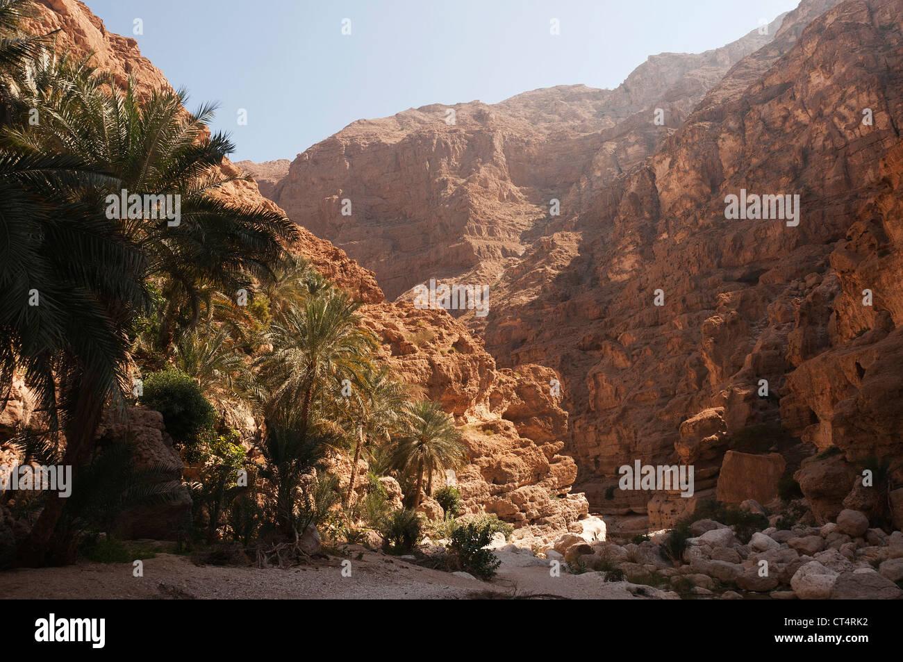 Elk207-2007 Oman, East coast, Wadi Shab, canyon landscape - Stock Image