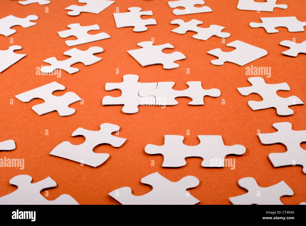 Lots of jigsaw pieces spread out, with two joined together - Stock Image