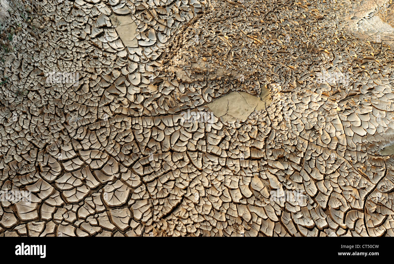 arid, baked, barren, catastrophe, climate change, climatic, cracked, desiccated, disaster, drought, dry, earth, - Stock Image