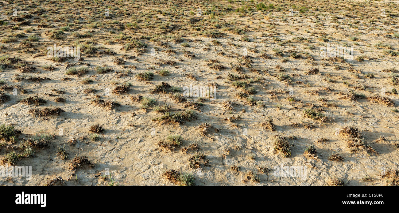 arid, background, barren, climate, climatic, deserted, dry, earth, ecosystem, environment, global warming, habitat, - Stock Image