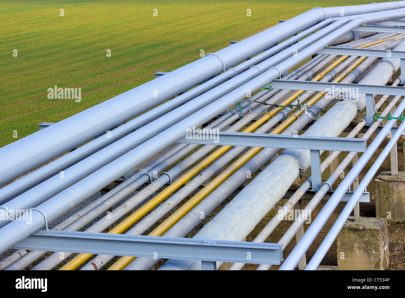 Pipeline tubes on green field - Stock Image