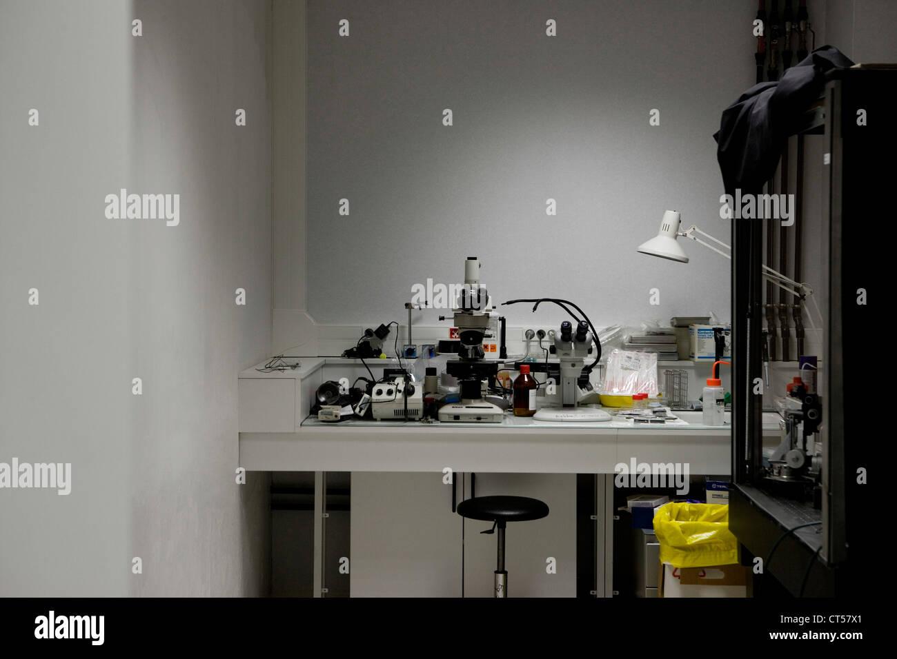 BIOLOGY LABORATORY - Stock Image