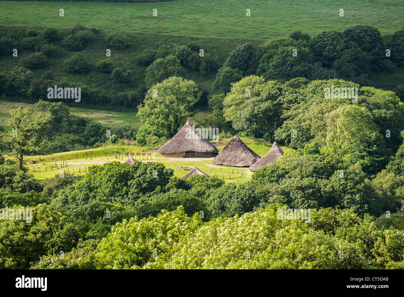Castell Henllys reconstructed iron age hill fort and round houses, Pembrokeshire Wales UK - Stock Image
