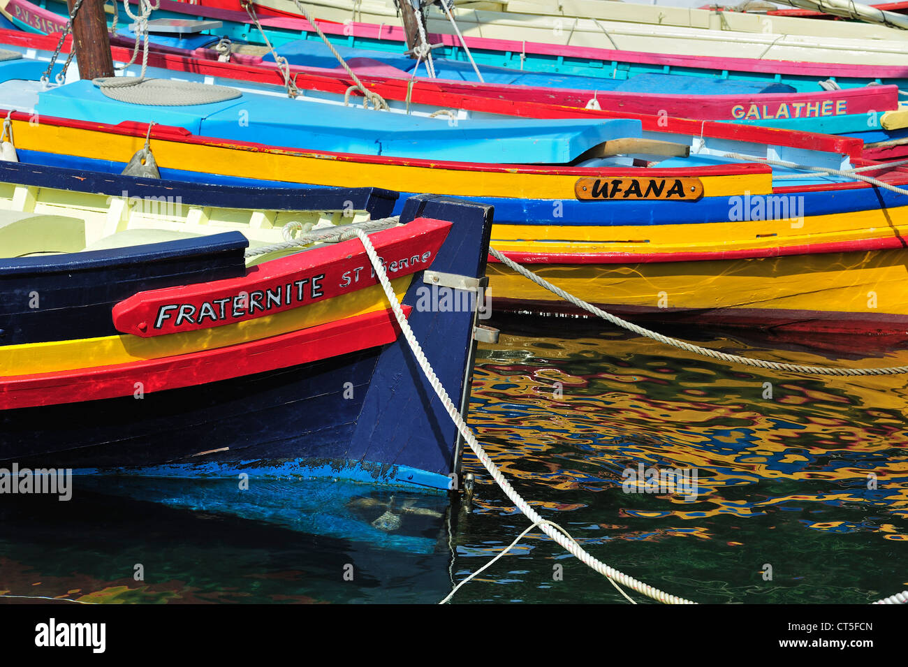 Traditional colourful fishing boats for fishing anchovies in the harbour at Collioure, Pyrénées-Orientales, - Stock Image