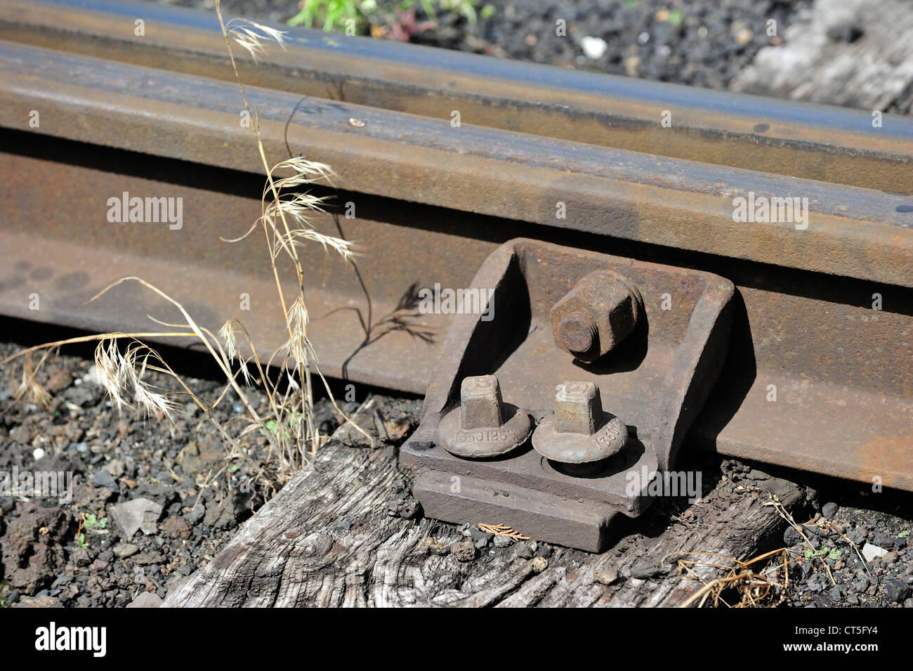 Railroad tracks on wooden sleepers at the depot of the Chemin de Fer à Vapeur des Trois Vallées at Mariembourg, - Stock Image