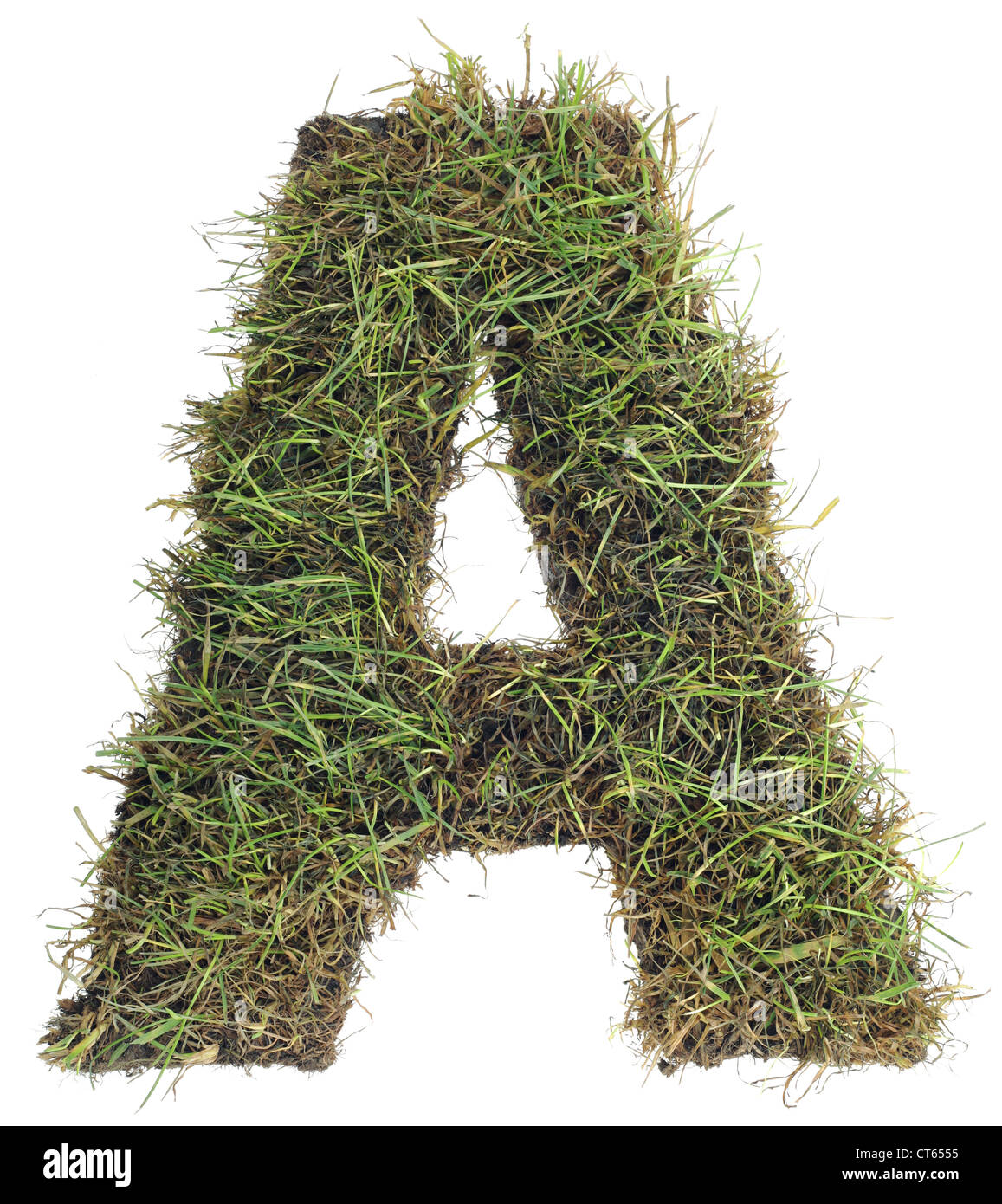 af24147fc Letter A made with Real Grass Isolated on White Background - Stock Image