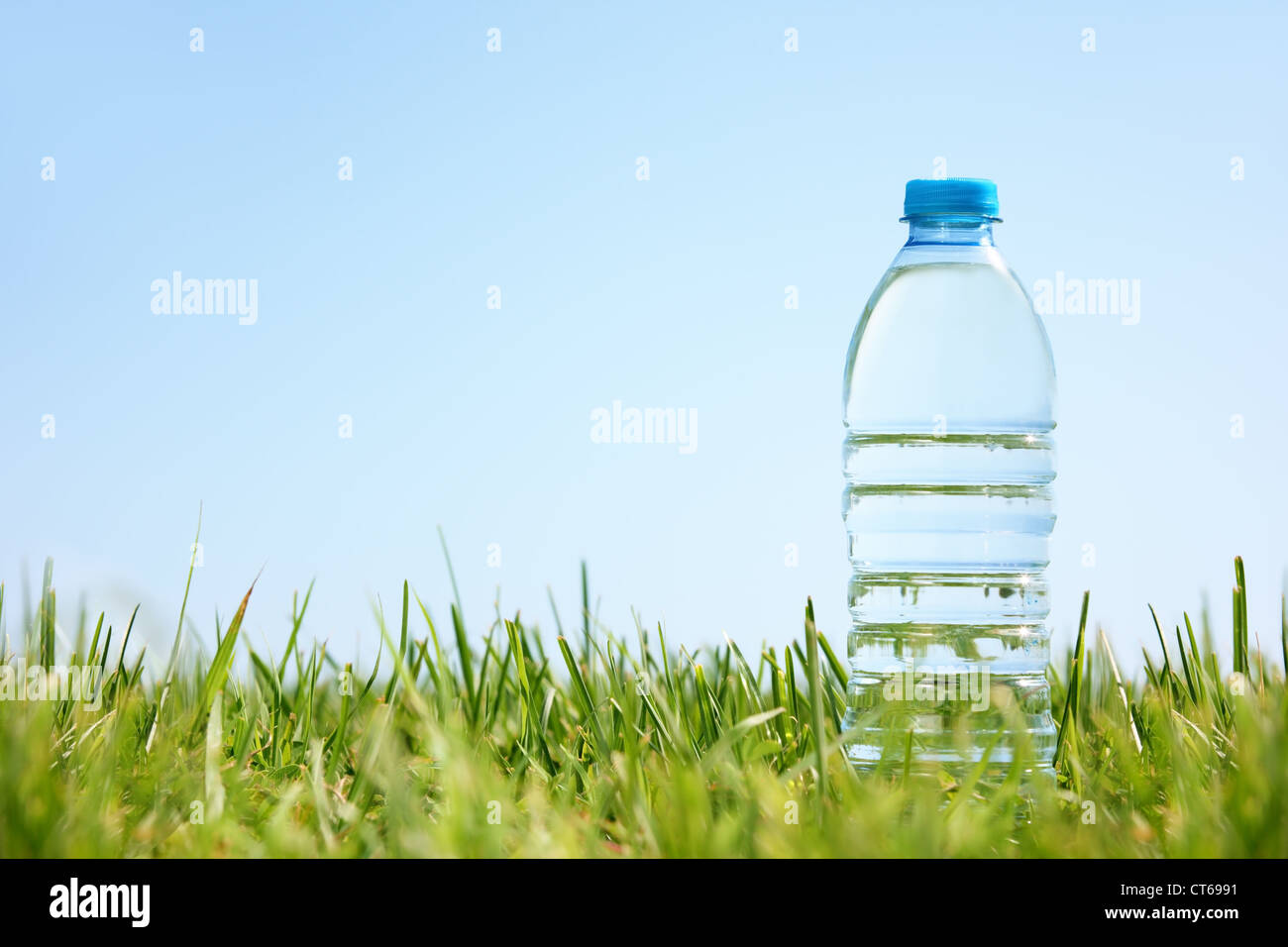 Water bottle on green grass with copy space. - Stock Image